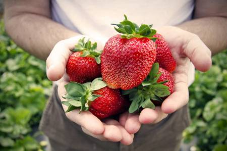 Strawberry-in-hands